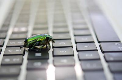 Bug sweep Sheffield
